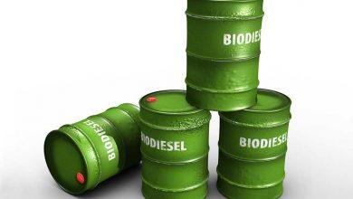 Trei producători de biocombustibili anchetați de UE