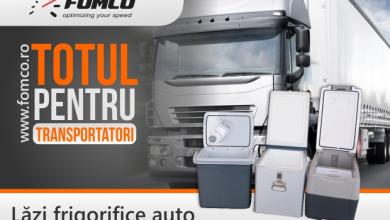Recomandări privind alegerea produsele frigorifice din cabina șoferului