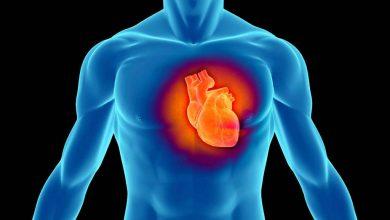 Campanie MAN de prevenire a infarctului în rândul șoferilor de camion