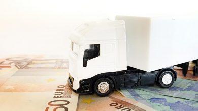 Transportator italian acuzat de evaziune fiscală de peste 30 milioane de euro
