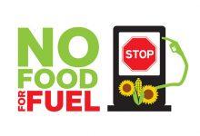 Uniunea Europeană va retrage sprijinul biocombustibililor din plante