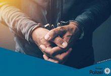 Poliția germană a reținut 35 de șoferi extracomunitari pentru curierat ilegal