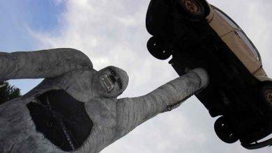 Volkswagen a forțat mai multe maimuțe să inhaleze vapori de emisii diesel