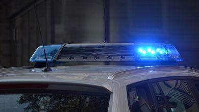 Șofer de camion român prins cu licență de transport falsă în Germania