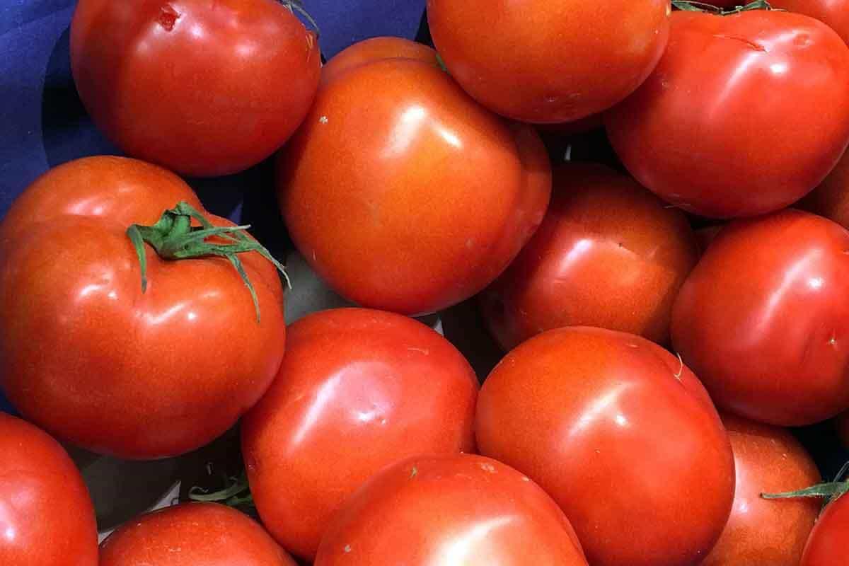 Provocările logisticii fructelor și legumelor proaspete înainte ca acestea să ajungă pe masă
