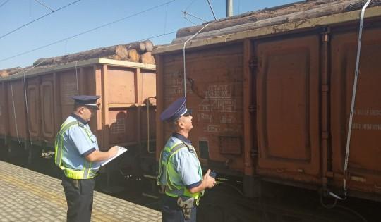 Peste 7.400 mc de lemn transportat ilegal pe calea ferată, confiscat de polițiști