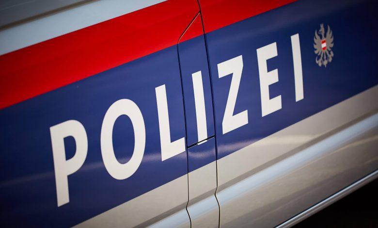 Patru români, care au furat mii de telefoane mobile în Austria, au ajuns la închisoare