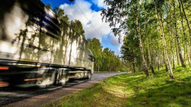 Din ce în ce mai multe cazuri de cabotaj ilegal descoperite în Suedia